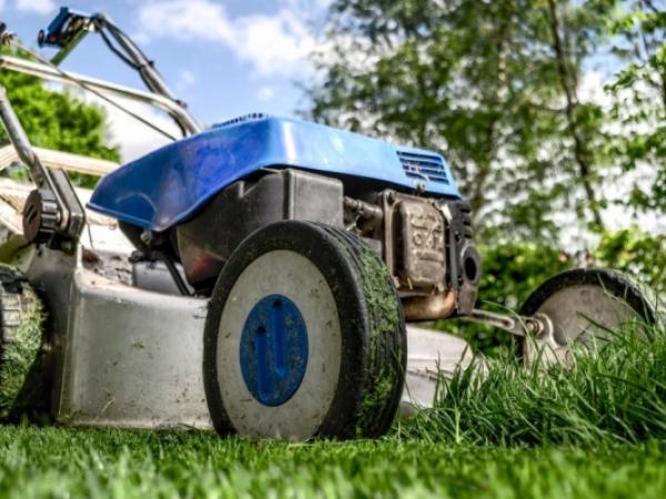5 sposobów na spędzenie czasu wolnego w ogrodzie
