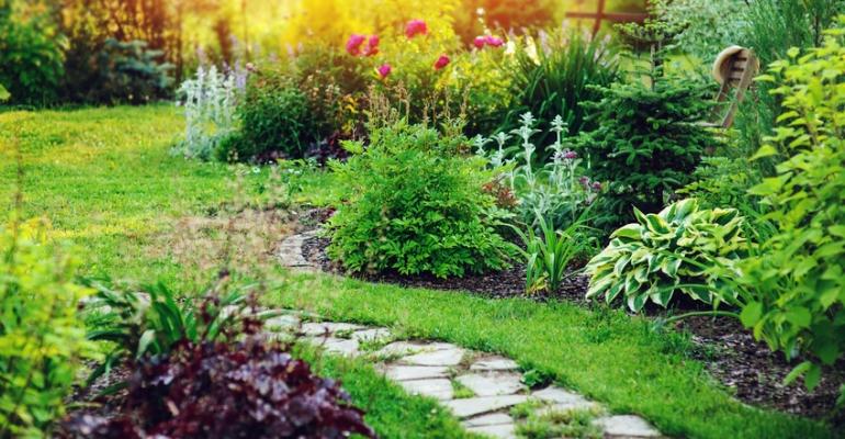 ABC projektowania ogrodu
