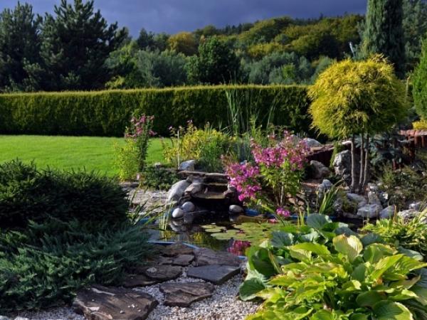 Jak zrobić skalniak w ogrodzie?