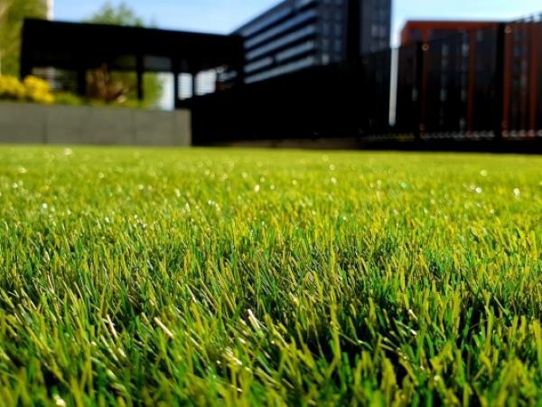 jak-zalozyc-trawnik-krok-po-kroku
