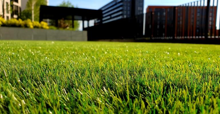 Jak założyć trawnik krok po kroku?